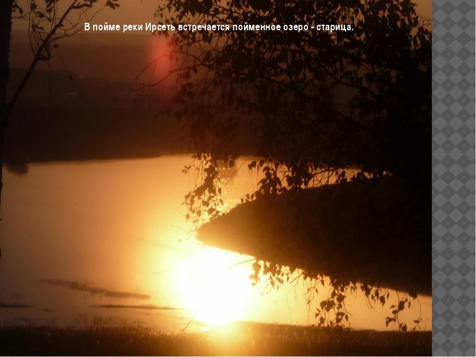 В пойме реки Ирсеть встречается пойменное озеро - старица.
