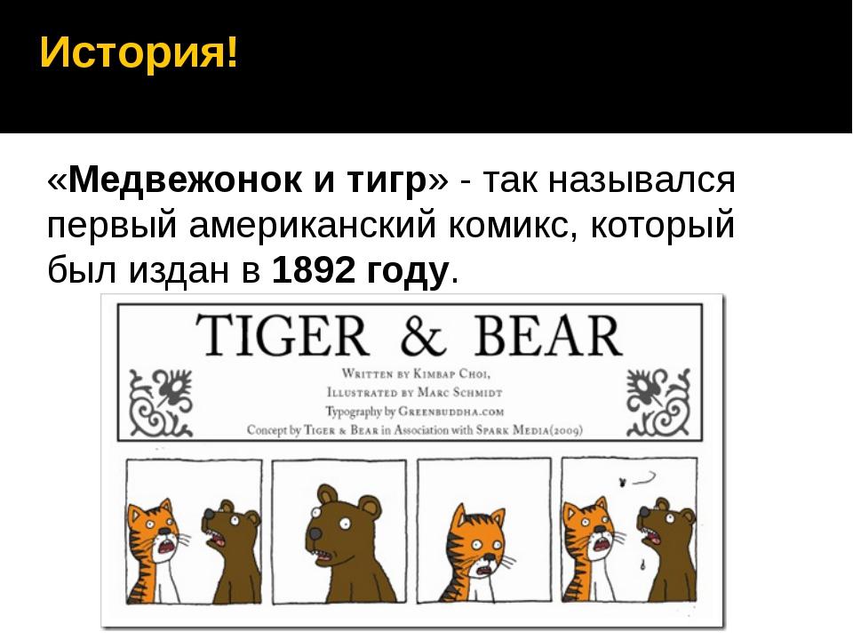 История! «Медвежонок и тигр» - так назывался первый американский комикс, кото...