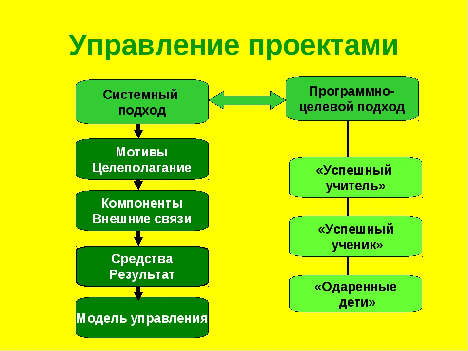 Управление проектами Системный подход Программно- целевой подход «Успешный уч...