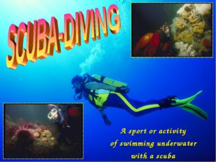 A sport or activity of swimming underwater with a scuba