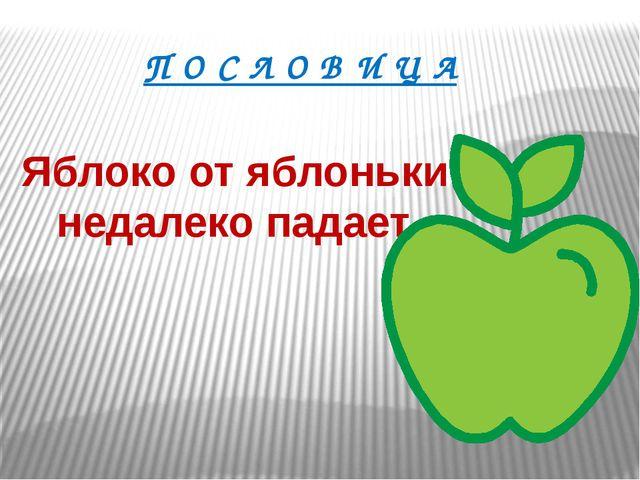Яблоко от яблоньки недалеко падает. П О С Л О В И Ц А