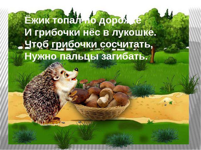 Ёжик топал по дорожке И грибочки нёс в лукошке. Чтоб грибочки сосчитать, Нужн...