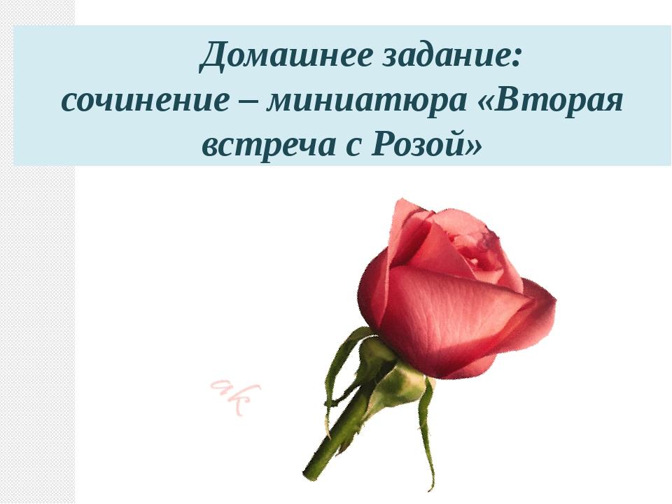 . Домашнее задание: сочинение – миниатюра «Вторая встреча с Розой»