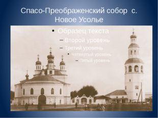 Спасо-Преображенский собор с. Новое Усолье