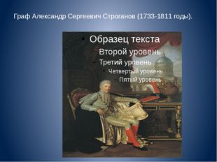 Граф Александр Сергеевич Строганов (1733-1811 годы).