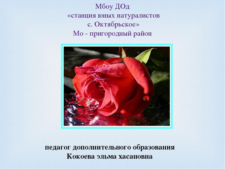 Мбоу ДОд «станция юных натуралистов с. Октябрьское» Мо - пригородный район пе...