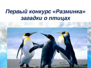 Первый конкурс «Разминка» загадки о птицах