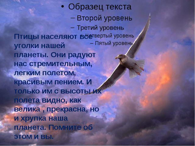 Птицы населяют все уголки нашей планеты. Они радуют нас стремительным, легки...