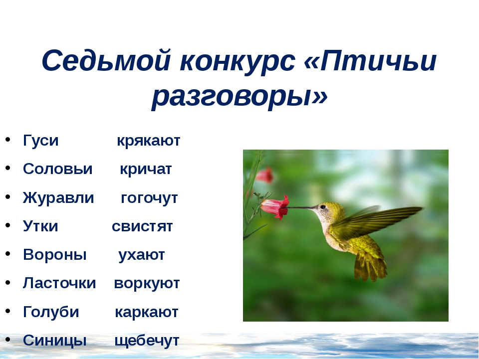 Седьмой конкурс «Птичьи разговоры» Гуси крякают Соловьи кричат Журавли гогочу...