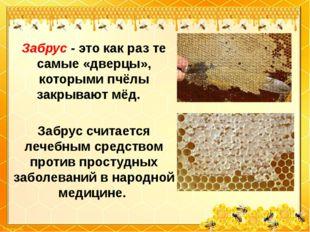 Забрус - это как раз те самые «дверцы», которыми пчёлы закрывают мёд. Забрус