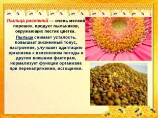 Пыльца растений — очень мелкий порошок, продукт пыльников, окружающих пестик