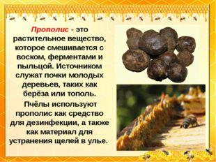 Прополис - это растительное вещество, которое смешивается с воском, ферментам