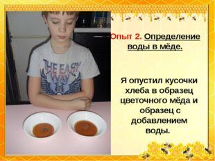 Опыт 2. Определение воды в мёде. Я опустил кусочки хлеба в образец цветочного