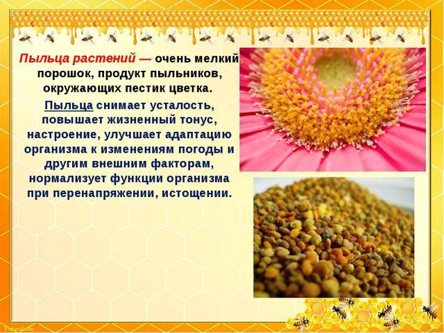 Пыльца растений — очень мелкий порошок, продукт пыльников, окружающих пестик...