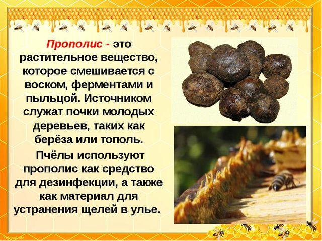 Прополис - это растительное вещество, которое смешивается с воском, ферментам...