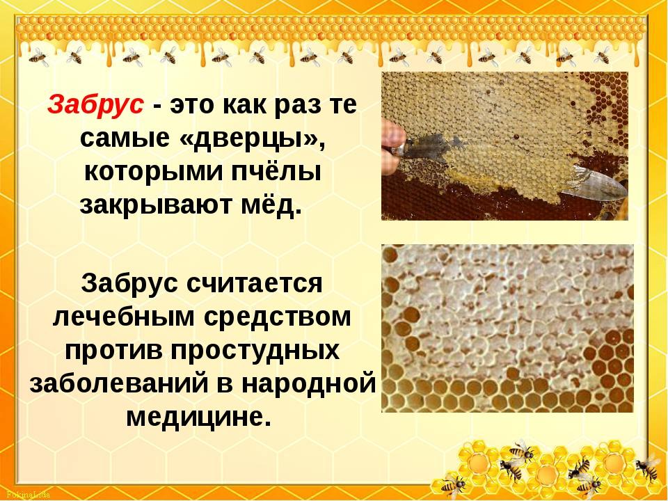 Забрус - это как раз те самые «дверцы», которыми пчёлы закрывают мёд. Забрус...