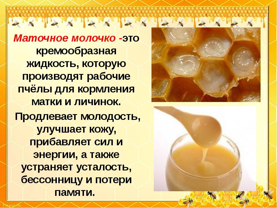 Маточное молочко -это кремообразная жидкость, которую производят рабочие пчёл...