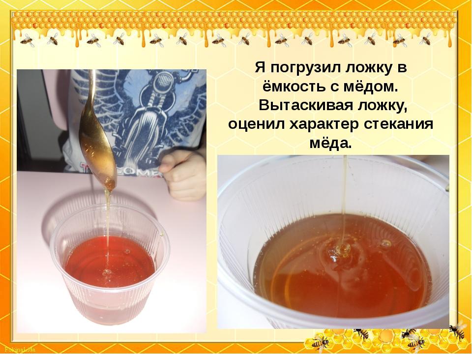 Я погрузил ложку в ёмкость с мёдом. Вытаскивая ложку, оценил характер стекани...