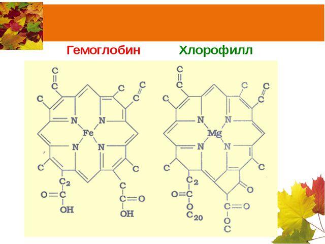Гемоглобин Хлорофилл