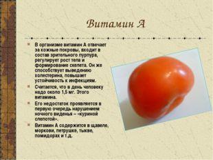 Витамин А В организме витамин А отвечает за кожные покровы, входит в состав з