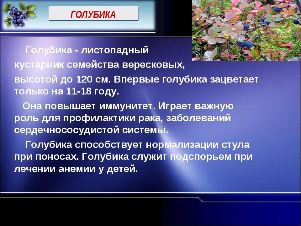 ГОЛУБИКА Голубика - листопадный кустарник семейства вересковых, высотой до 12...