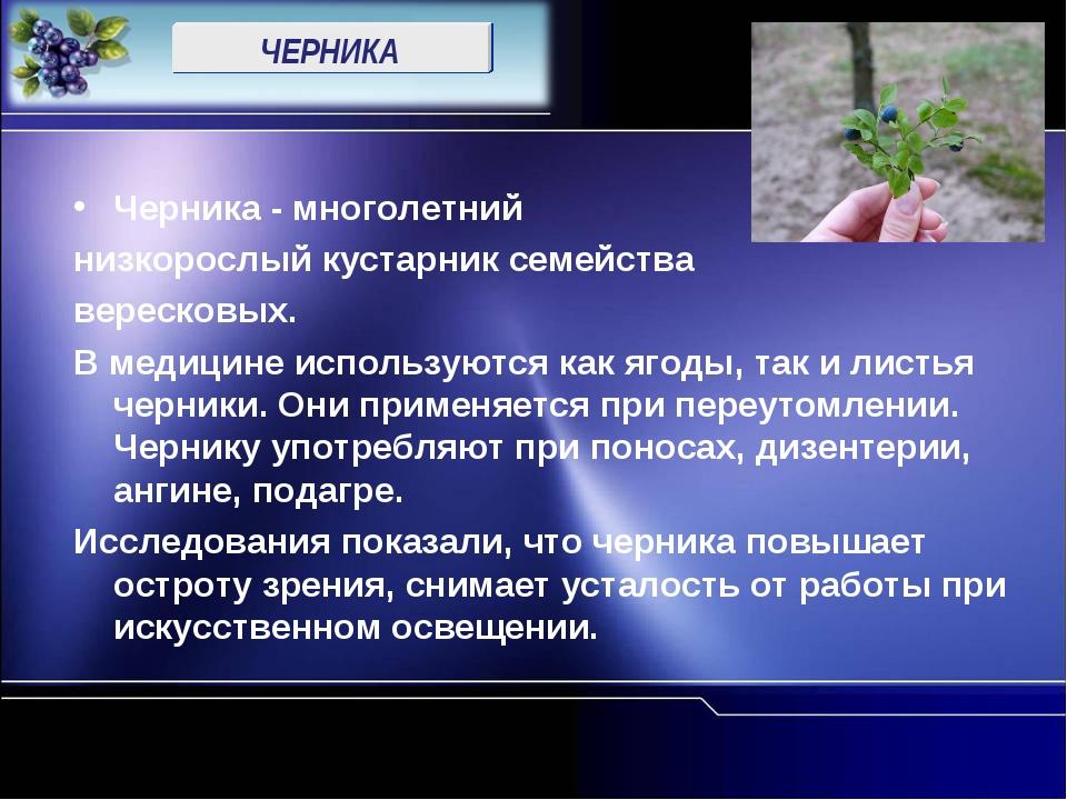 ЧЕРНИКА Черника - многолетний низкорослый кустарник семейства вересковых. В м...