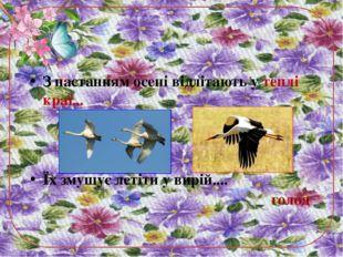 З настанням осені відлітають у теплі краї... Їх змушує летіти у вирій.... голод