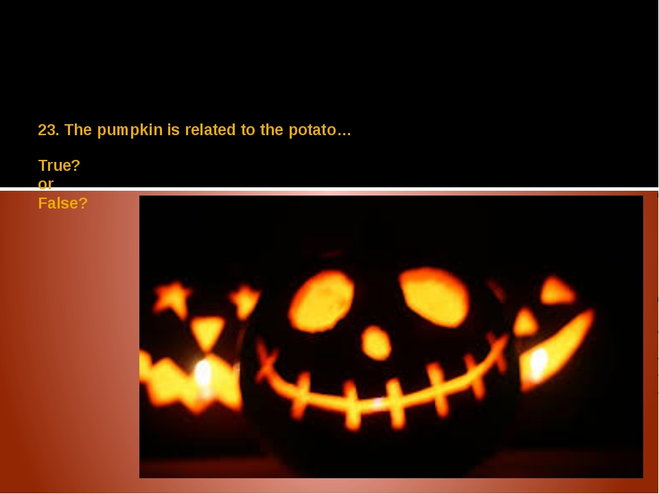 23. The pumpkin is related to the potato… True? or False?