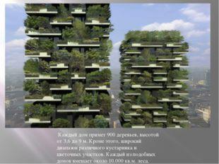 Каждый дом примет 900 деревьев, высотой от 3,6 до 9 м. Кроме этого, широкий