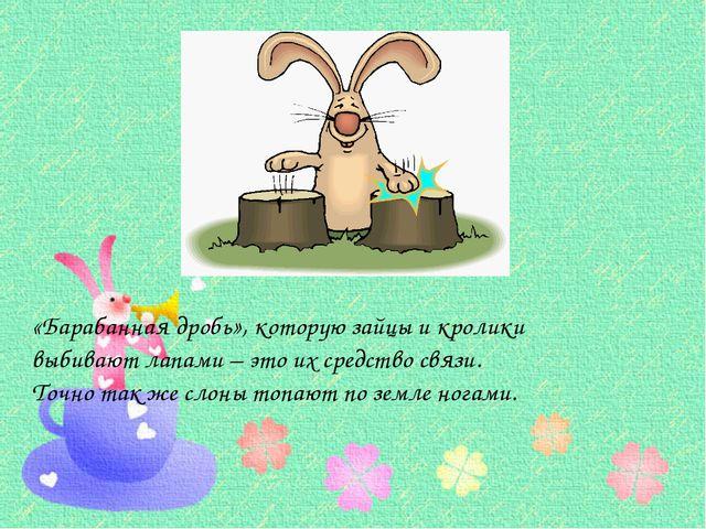 «Барабанная дробь», которую зайцы и кролики выбивают лапами – это их средств...