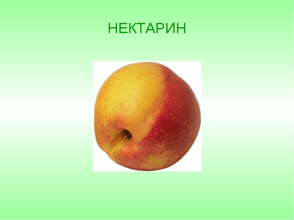 НЕКТАРИН