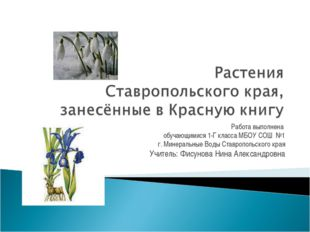 Работа выполнена обучающимися 1-Г класса МБОУ СОШ №1 г. Минеральные Воды Став