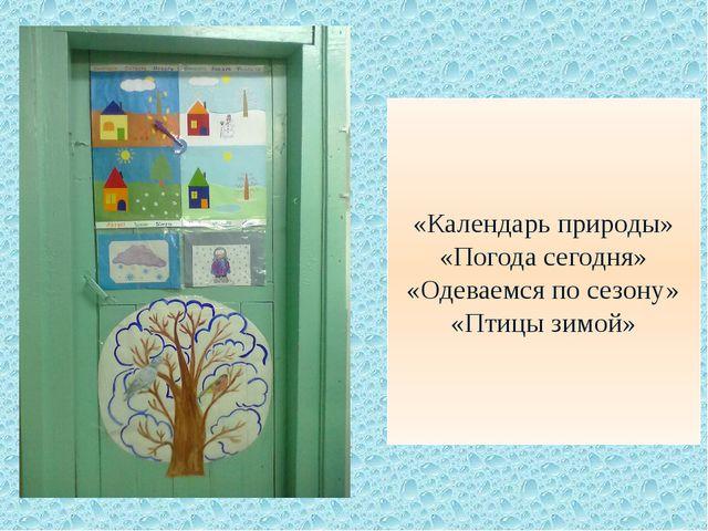 «Календарь природы» «Погода сегодня» «Одеваемся по сезону» «Птицы зимой»