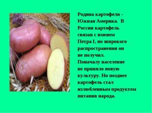 Родина картофеля - Южная Америка. В России картофель связан с именем Петра I,
