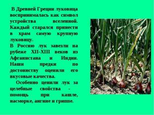 В Древней Греции луковица воспринималась как символ устройства вселенной. Ка