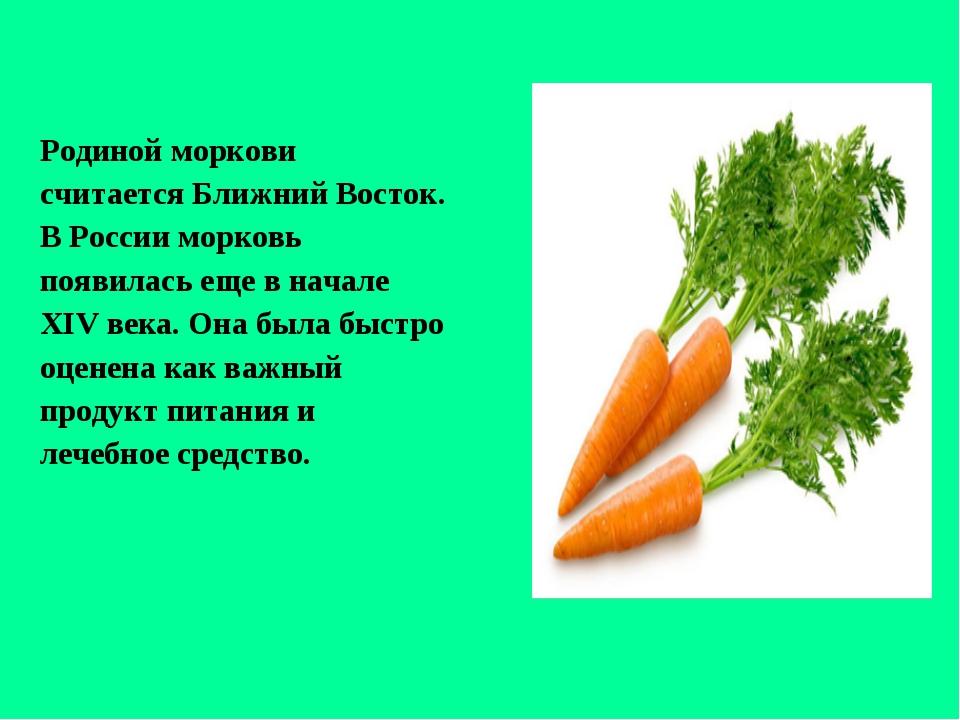 Родиной моркови считается Ближний Восток. В России морковь появилась еще в на...