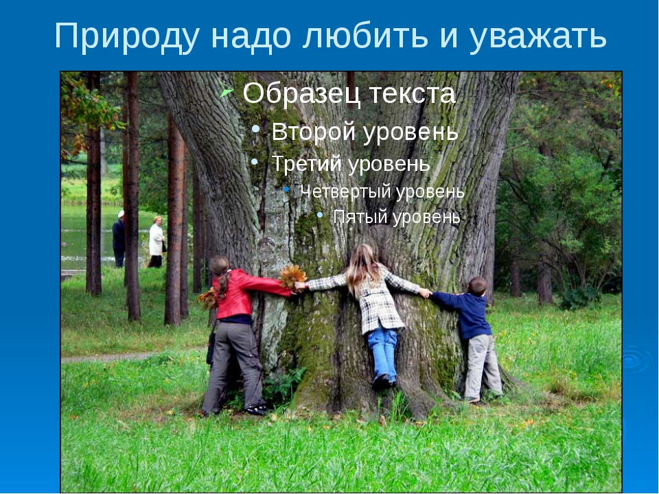 Природу надо любить и уважать