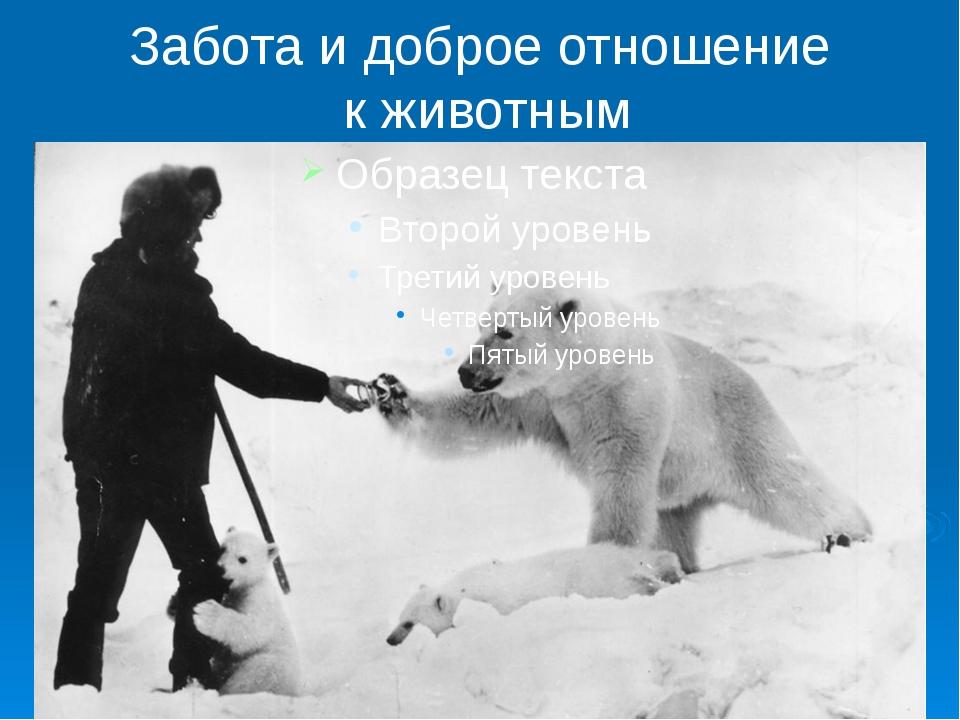 Забота и доброе отношение к животным