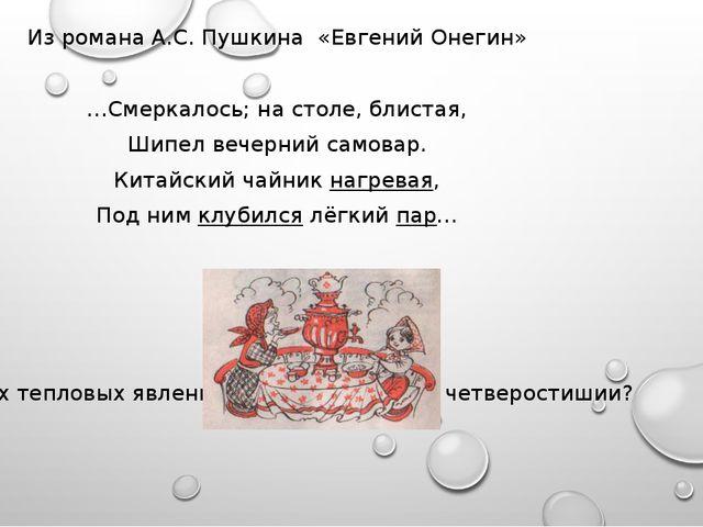 Из романа А.С. Пушкина «Евгений Онегин» …Смеркалось; на столе, блистая, Шипе...