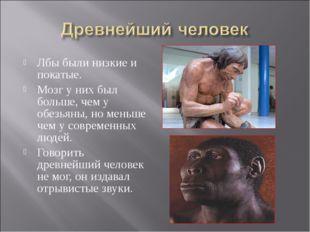 Лбы были низкие и покатые. Мозг у них был больше, чем у обезьяны, но меньше ч