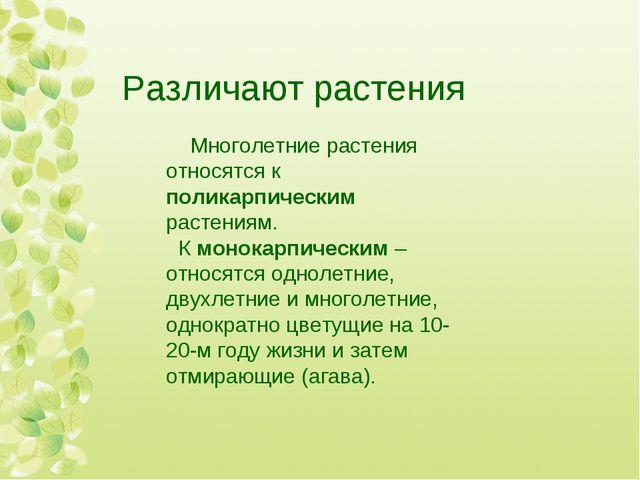 Различают растения Многолетние растения относятся к поликарпическим растениям...