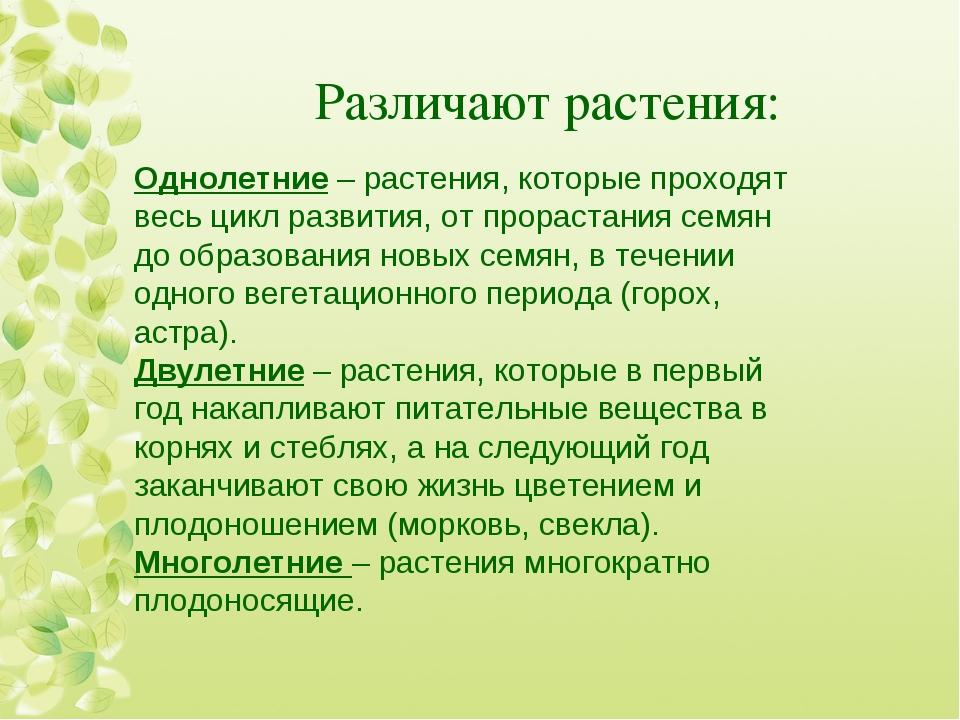 Различают растения: Однолетние – растения, которые проходят весь цикл развити...