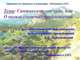 Практикум по синтаксису и пунктуации. Подготовка к ЕНТ. С русским языком можн