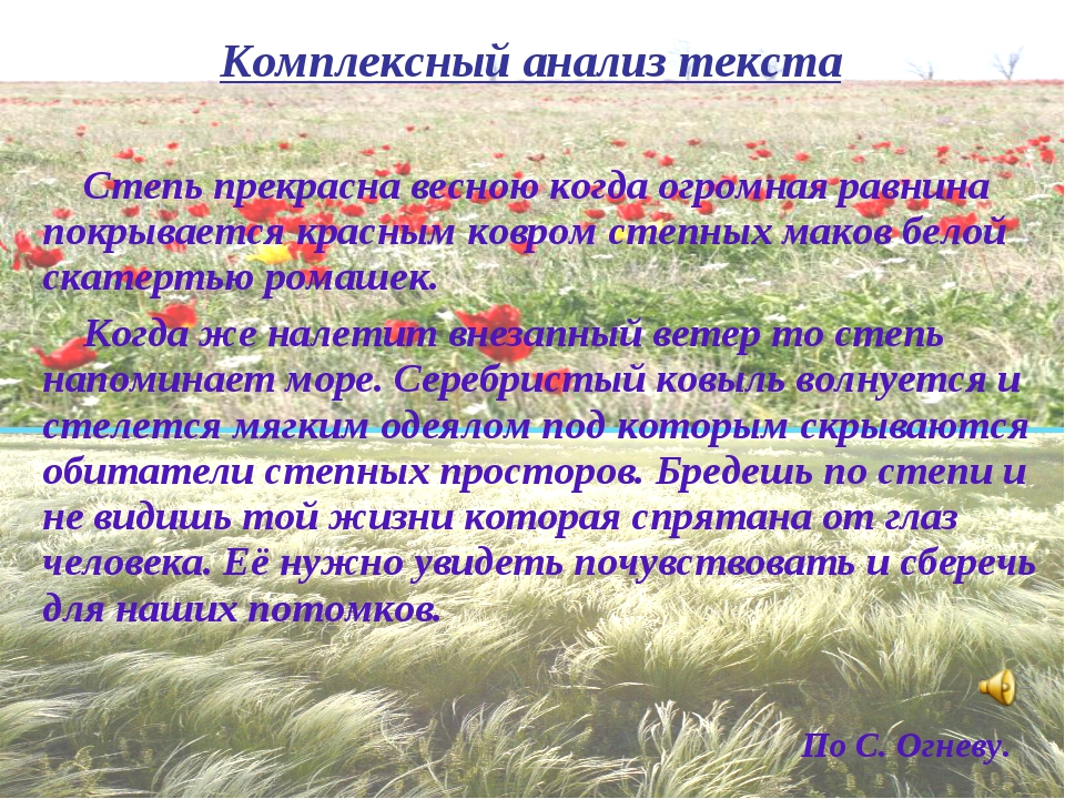 Степь прекрасна весною когда огромная равнина покрывается красным ковром сте...