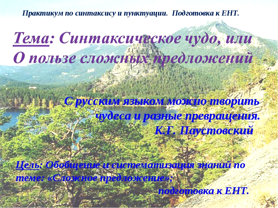 Практикум по синтаксису и пунктуации. Подготовка к ЕНТ. С русским языком можн...
