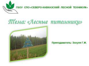 «СЕВЕРО-КАВКАЗСКИЙ ЛЕСНОЙ ТЕХНИКУМ» Преподаватель: Зозуля Г.М. ГБОУ СПО