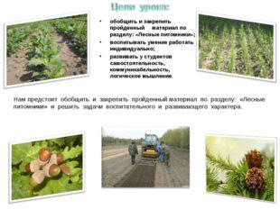 обобщить и закрепить пройденный материал по разделу: «Лесные питомники»; восп