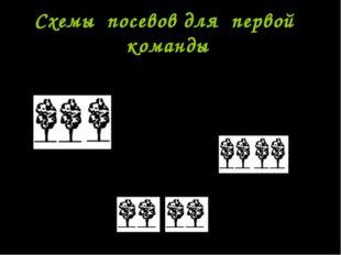 Схемы посевов для первой команды 70-10-10-30-10-10-70 70-40-40-70 70-15-30-15