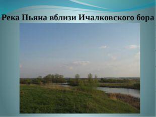 Река Пьяна вблизи Ичалковского бора