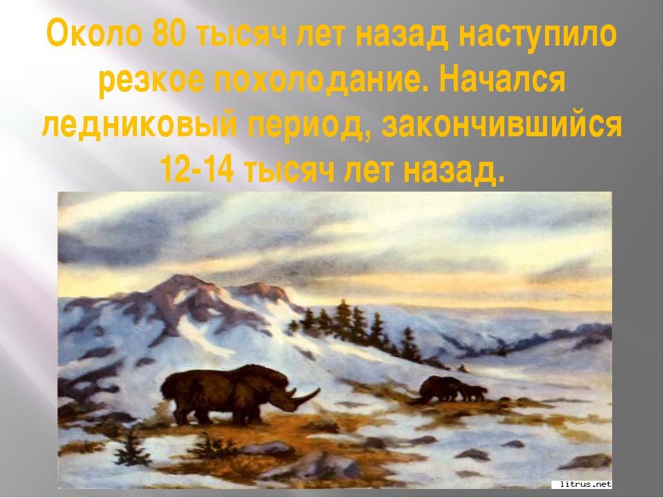 Около 80 тысяч лет назад наступило резкое похолодание. Начался ледниковый пер...